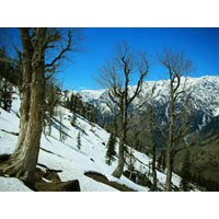 Wonders of Himachal