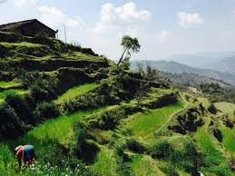 Charm of Kumaon Hills Tour