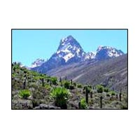 Trekking Mt. Kenya Tour Package