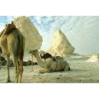 White Desert and El Bahariya Oasis Package 3 Days/2 Nights