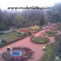 Mysore - Ooty - Coonoor Tour(2N/3D)