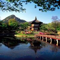 Natural Korea Tour
