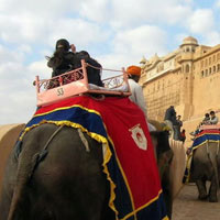 Forts & Palaces India Tour