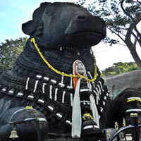 Gateway to West & South India Tour