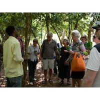 Furahia Tours & Safari Tour