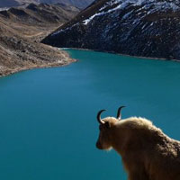 Everest Gokyo Valley Trekking - 14 Days
