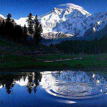 Fairy Meadows, Nanga Parbat Base Camp Trek