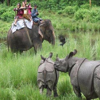 Nepal Tour( Ex. Gorakhpur)