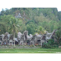 Toraja Anciant Village Tour