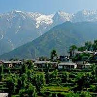 Himachal Pradesh Tour Char Devi - Honey Travels - Hi...