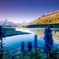 Amritsar - Dharamsala - Chamunda - Kangra - Jwalaji - Himachal Pilgrimage Tour