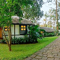 Coorg Package Tour from Mangalore