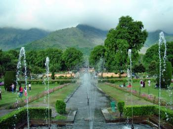 Kashmir Gardens Tour Package