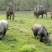 05 Night 06 Days Lumbini - Pokhara - Kathmandu - Chitwan With Manokamna By Car