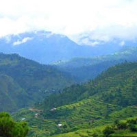 New Delhi - Nainital - Ranikhet - Almora - Kausani - Tour Package