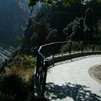 Dalhousie - Khajjiar - Dharamshala Honeymoon Tour Package from Chakki Bank