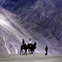 Jammu - Katra - Shivkhori - Patnitop - Amritsar Tour
