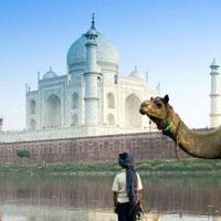 Delhi - Jaipur - Bikaner - Jaisalmer - Jodhpur - Mount Abu - Udaipur - Sawaimadhopur - Agra Tour