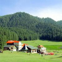 Manali - Rohtang Pass - Naggar - Manali Tour