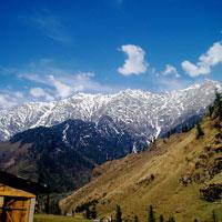 Dharamsala - Chamundaji - Palampur - Dharamsala Tour