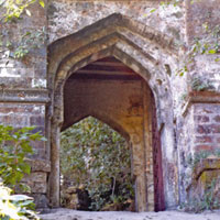 Bandhavgarh Wildlife Sanctuary Tour