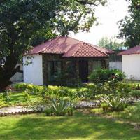 Luxury in Wilderness, Ramnagar