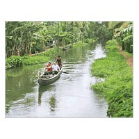 Munnar And Alleppey Houseboat Tour Package