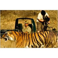 6 Days Wildlife Tiger Tour