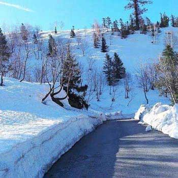 Shimla Kullu Manali Package
