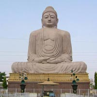 The Land of Buddha & Dharmshala Tour