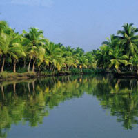 Backwater Magic - Alleppey Tour