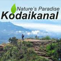 KodaiKanal Honeymoon Package