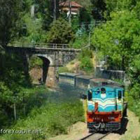 Ooty Honeymoon Package
