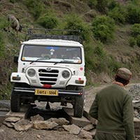 Himalayan Safari Tour