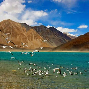 Leh-Ladakh Tour