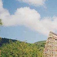 South IndiaFestivalTour