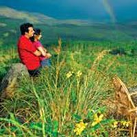 Honeymoon Tours Himachal