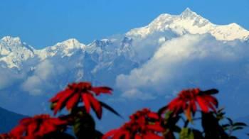 Darjeeling - Gangtok - Kalimpong Tour