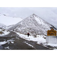 Chandigarh To Shimla, Kufri, Naldehra, and Back To Chandigarh Tour