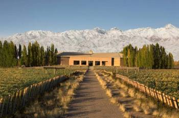 Wineries of Chile, Argentina, Uruguay and Brazil 14 Nights / 15 Days