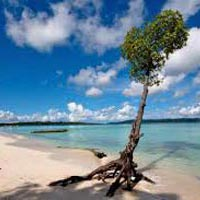 Discover Andamans Tour