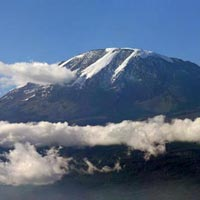7 Days _ Kilimanjaro Safari Tour
