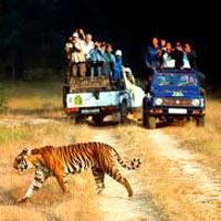 Delhi - Nainital - Corbett - Mussoorie Tour - 6 Night 7 Days