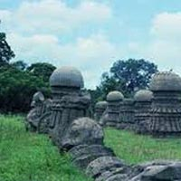 5 Night/6 Days 3Night Shillong/ 2 Night Kaziranga/1 Night Guwahati Tour