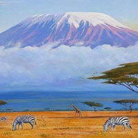 15 Days Mt Kilimanjaro Hike And Tanzania Wildlife Combo