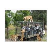 Wildlife Tour In Tamilnadu