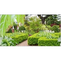 Ooty Packages - 2 Night and 3 Days