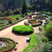 Kodaikanal Short Tour Package 3 Nights 4 Days