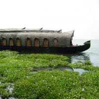 04 Nights/05 Days Kerala Waterfalls and Hill Station Tour