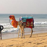 Luxury Odisha Tour